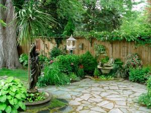 Consejos prácticos de jardinería