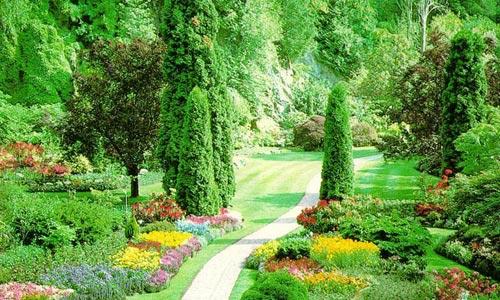 Jardinería fácil
